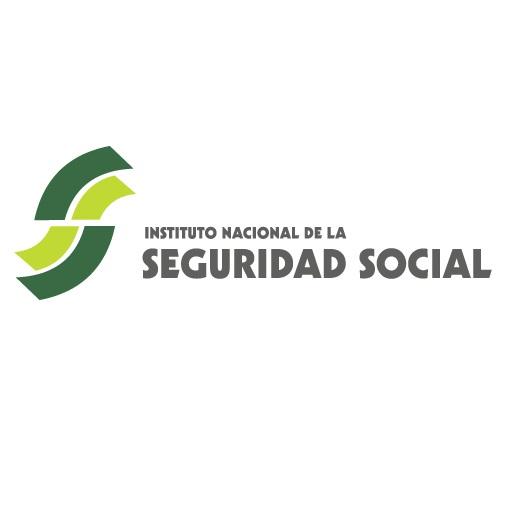 Instituto Nacional de Seguridad Social (INSS)